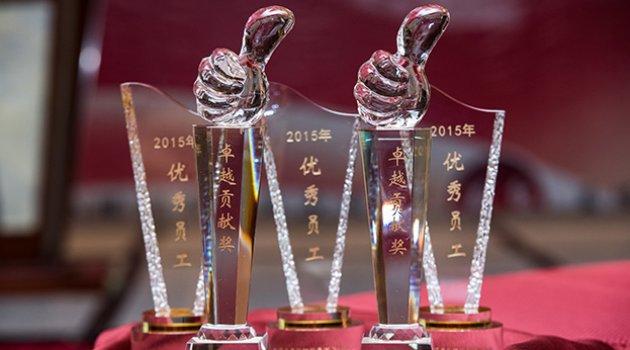 2015年度易泽莱团队奖项